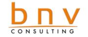 BNV Consulting
